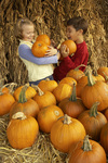 Virginia has more than 100 fall festivals where people can pick their favorite fall experience.