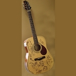Autographed Martin DM Guitar