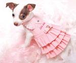 Little Love Dress
