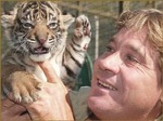 Steve Irwin gets up close and personal with Bengal tiger cub