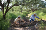 Steve Buckley (left), Manager of Sonoita Creek Farms and Jeffrey Cooper (right), Executive Director of La Semilla constructing a brush weir.