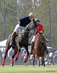 Colonial Polo Cup, Shirley Plantation