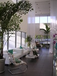 Salon Oasis,  Boca Raton's hot new addition to the hair scene.