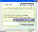 InstantEngage Chat Window