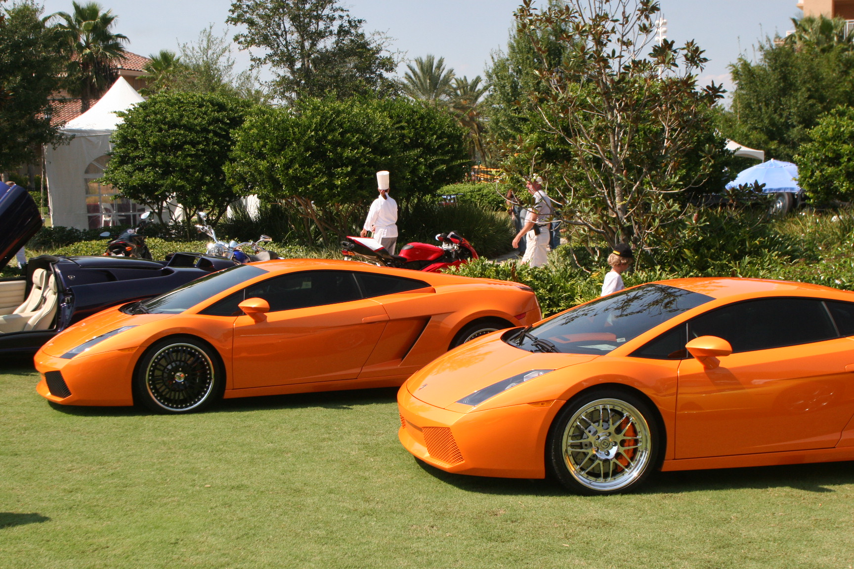 Fine Wine Culinary Masterpieces And Exotic Cars Mix As