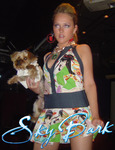 Pet_Fashion_101_at_SKYBARk