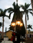 Delray Beach Giant Christmas Tree