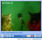 Jingle Cats perform