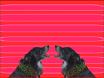 Jingle Dogs bark together