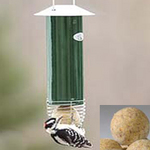 Automatic Suet Ball Feeder (No. 1526  $14.95) filled with our Peanut Butter Suet Balls (No. 1908  10 balls for $14.95)