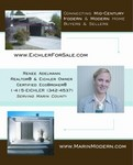 Certified EcoBroker specializing in California Modern Homes