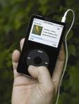 birdJam on an iPod Video