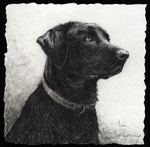 """Best Friend"" etching by wildlife artist Melanie Fain"