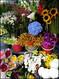 Flower Shop Tops List of California Businesses Sold Last Week