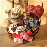 Teddy Bear & Chocolates