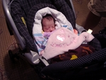 Dr. Linda Li's 8-day-old daughter, Alexis Victoria, is cuddled with her Love Notes Little Taggies blanket.