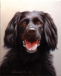 Painting of Black Labrador; Oil on canvas