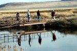Crossing the Water, Birders on a Balmy Day