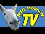www.BigAssProfits.com