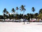 Miami and the beaches