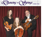 Dancing with Strings musical trio