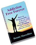 Addiction Free Forever book