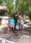 The Lavergne family elephant trekking on Bali