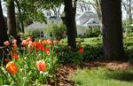 Oak Park Inn's gardens and Carriage House