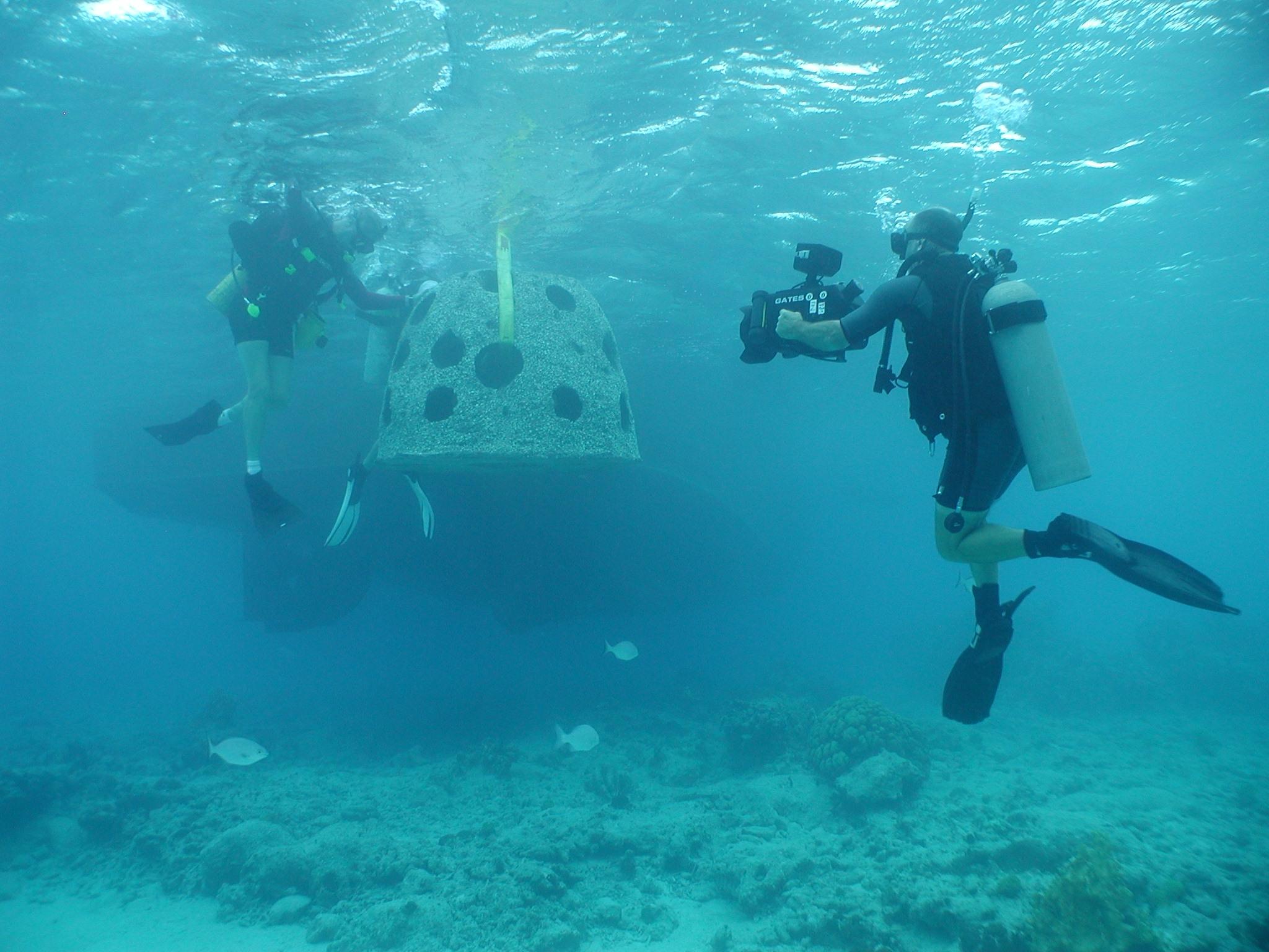 Scuba Diving Grand Camen