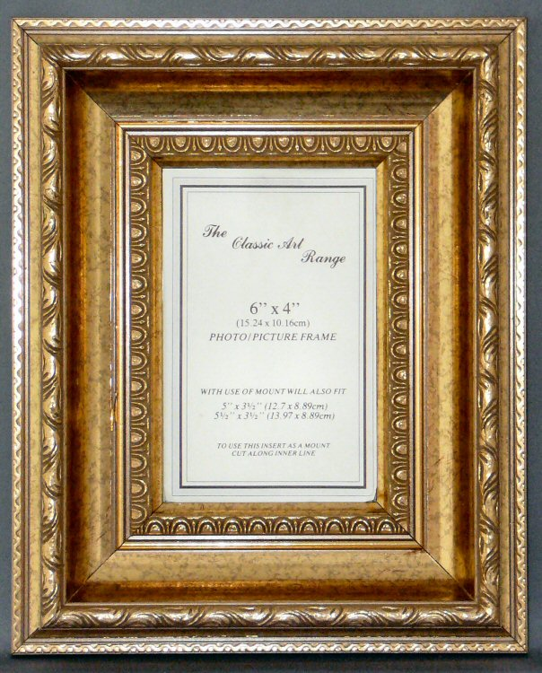 louis gold ornamental frame examplean example from frames online uks finest range a particularly decorative display frame