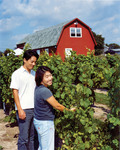 Agritourism in Niagara USA
