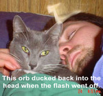 Orb Ducks Into Head