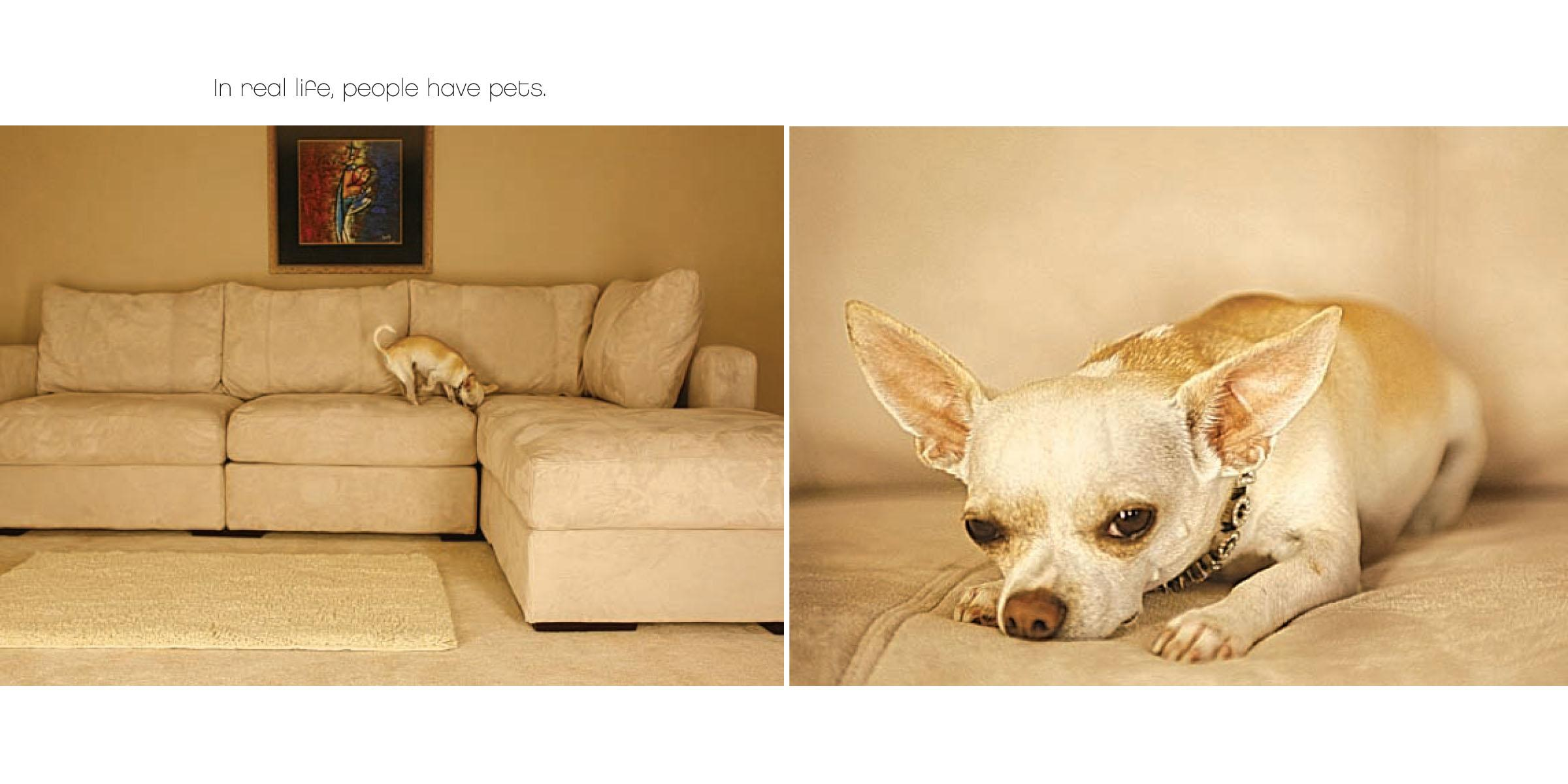 Sofa Covers For Pets