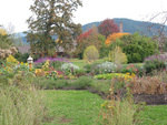 The Village Green Resort in Cottage Grove, Oregon offers more than 17 acres of themed gardens.