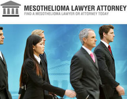 Mesothelioma Lawyer Attorney Com Launches Industry First Directory Of Mesothelioma Lawyers Mesothelioma Attorneys And Mesothelioma Doctors