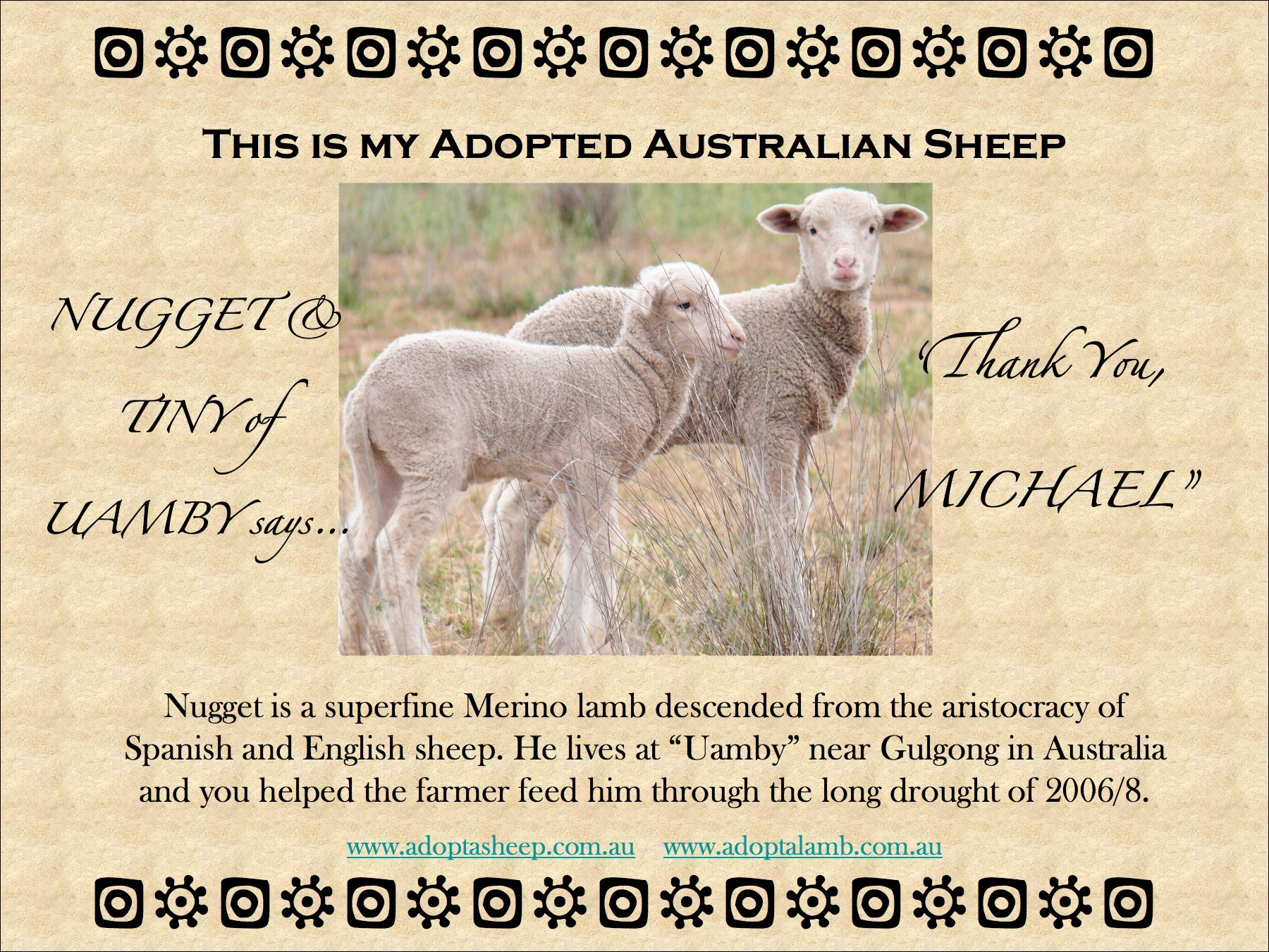shows the adopted sheep