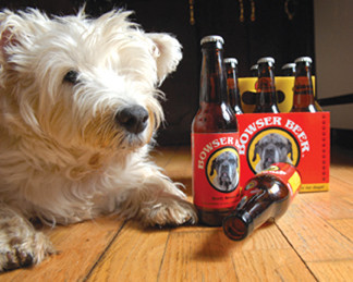 Dogs Wearing Wigs And Drinking Dog Beer What Is Going