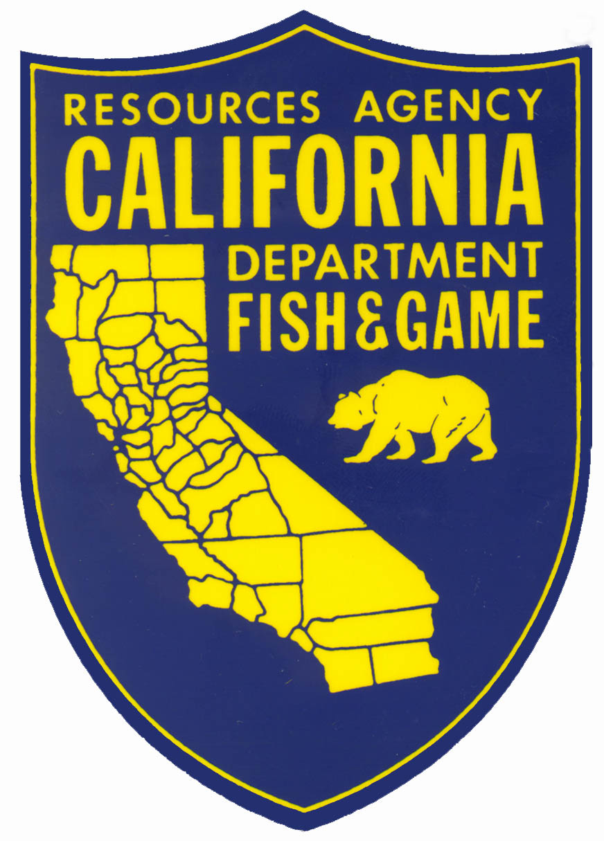 Scuba divers to inspect santa clara county reservoirs in for Ca game and fish