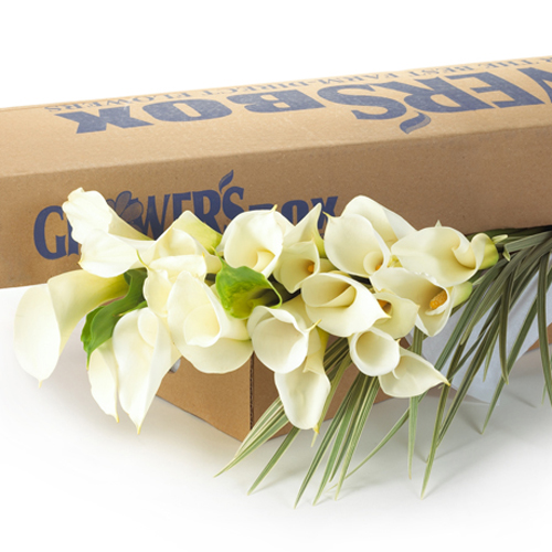 cheap wedding flowers in a box
