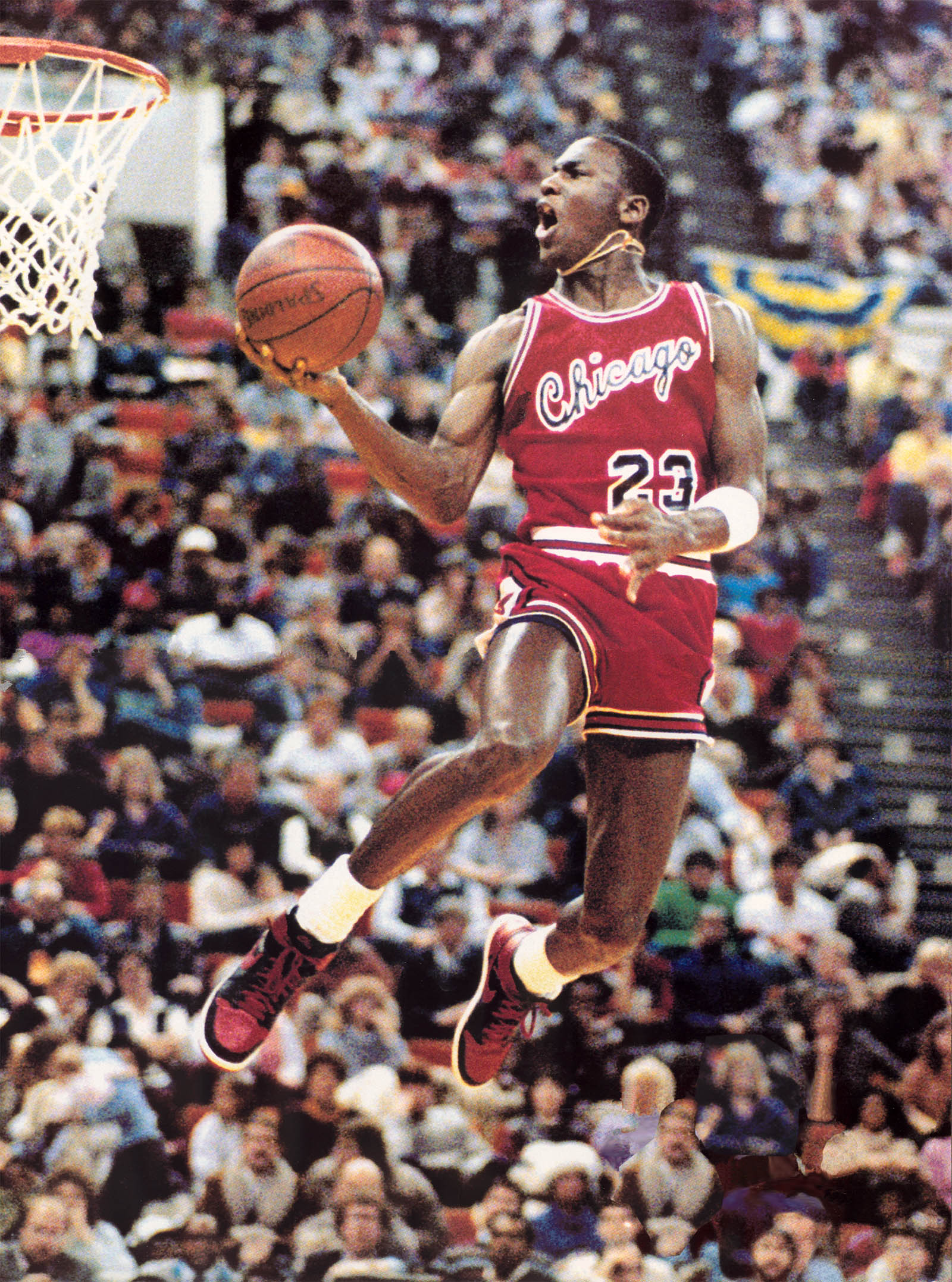 Michael Jordan in action