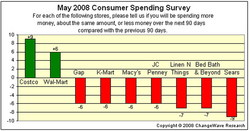 May 2008 Consumer Spending Survey