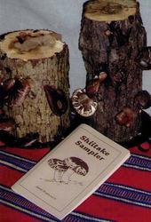 Lost Creek Mushroom Farm's Ma & Pa Shiitake Log Kit and Shiitake Sampler Cookbook for $55.45