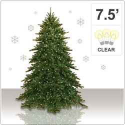 Consumers Choose Discount Christmas Trees over Holiday Gifts in Tight Economy