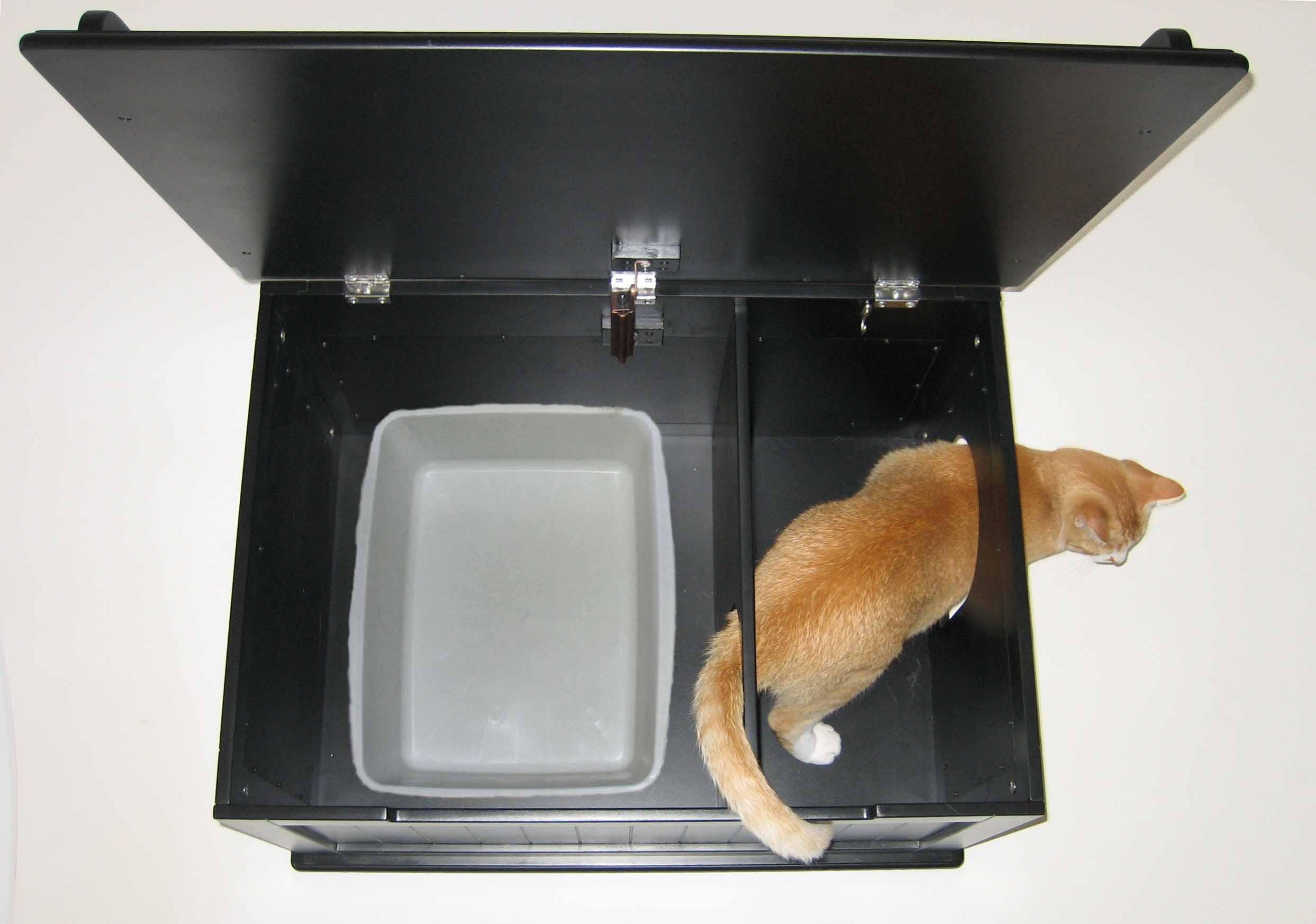 Кошачьи туалеты своими руками фото