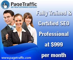 Hire Full Time SEO Consultants