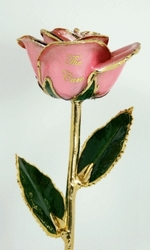 The New Cancer Contribution Rose &amp;#39;The Cure&amp;#39; Supports the End...