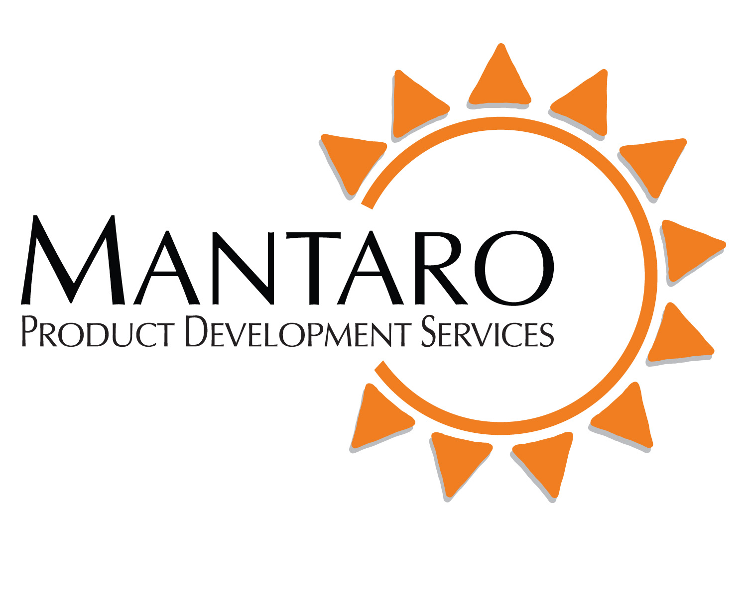 Gary bean joins mantaro product development services as vp for Product development consulting