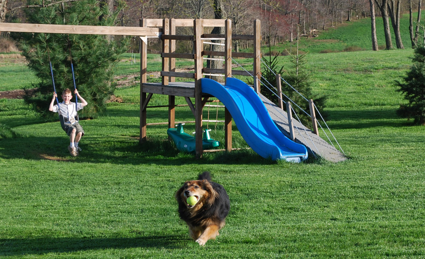 Enjoy Outdoor Living Amp Your Garden Without Pesky Critters