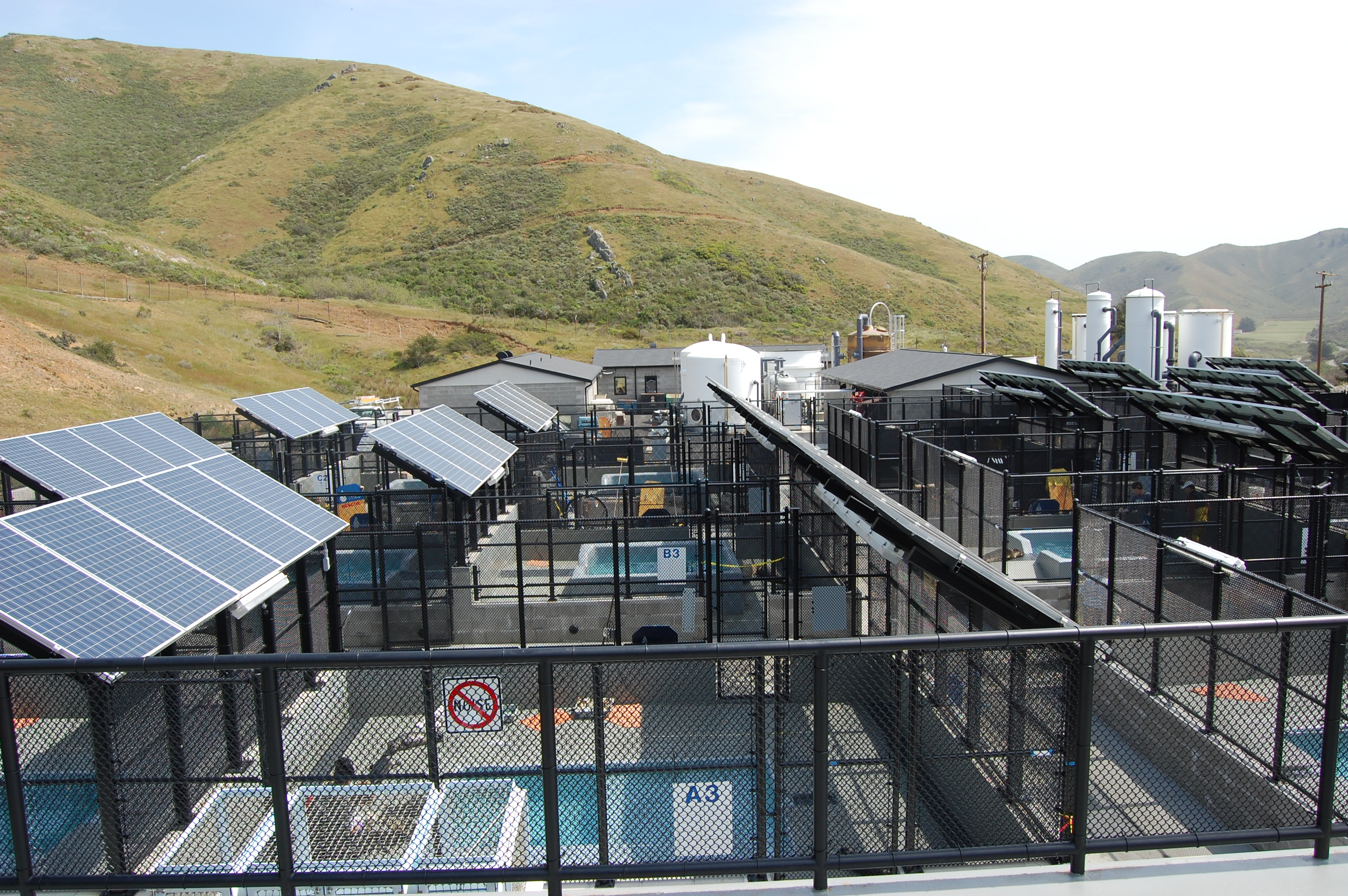 Solar Panels For Your Home >> The Marine Mammal Center's Newly Rebuilt Hospital and ...
