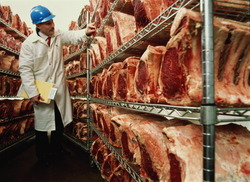 Meat Processing Plant Barton Meats Goes Under The Hammer